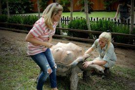 Australia Zoo 2013 16
