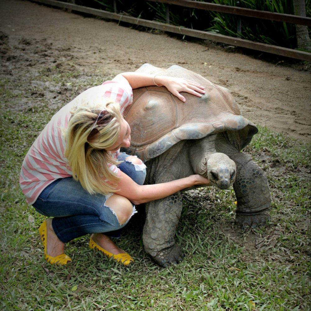 Patient Of The Week At Australia Zoo: My Date With A 170kg Tortoise Named Goliath