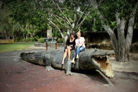 Australia Zoo 2013 10