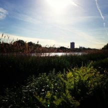 Hyde-Park-London-12