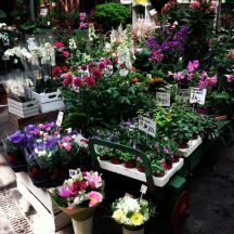 London_Borough_Market_7