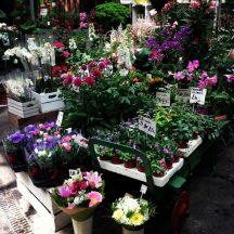 London_Borough_Market_7