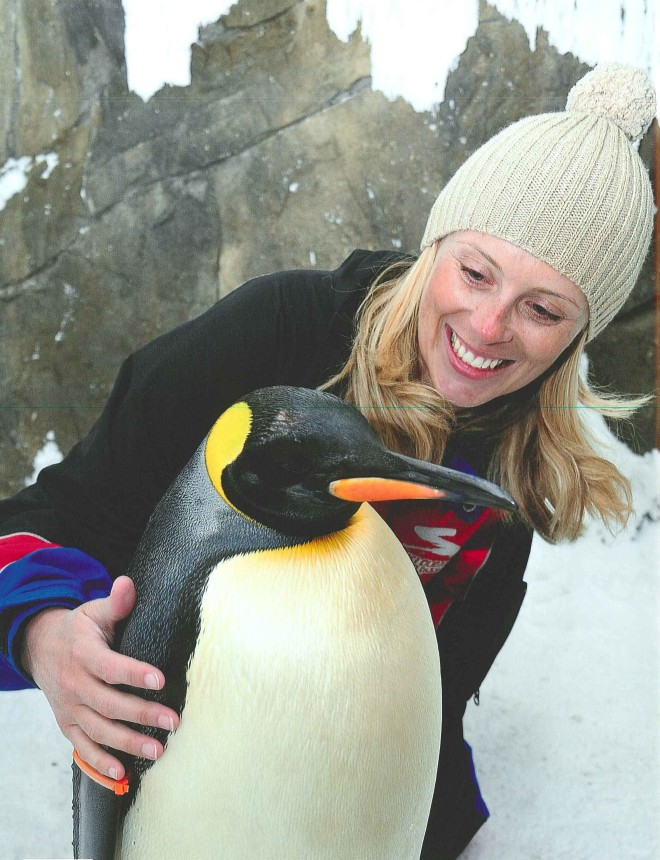 How to hug a penguin.