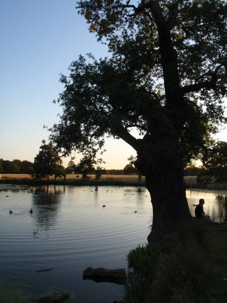 Richmond Park.