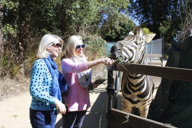 Australia Zoo 3