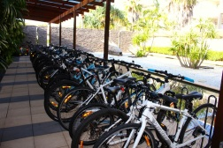 On ya bike ... Seven kilometres of cycling tracks and walkways surround Salt Village and Kingscliff with bike hire available at Peppers.