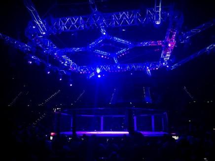 UFC Fight NIght 8