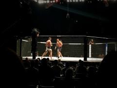 UFC Fight NIght 4