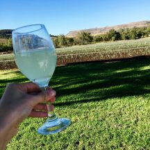 Cheers to sunshine-filled days in the Lockyer Valley.