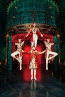 cirque-du-soleil_kooza_5