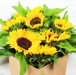 FlowerHaul1